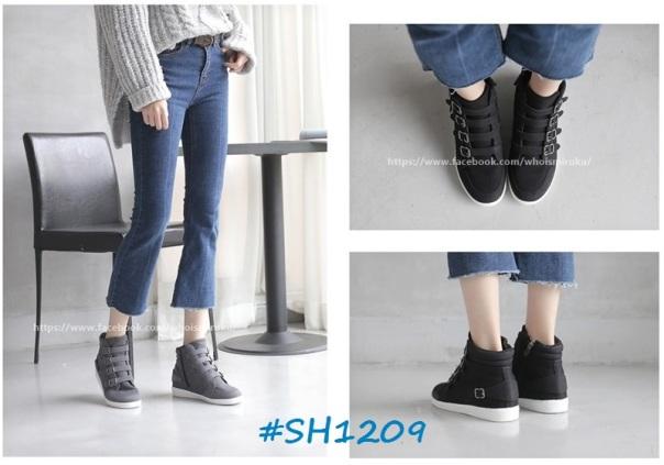 sh1209-1