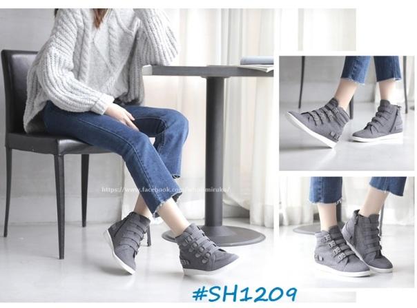 sh1209-3